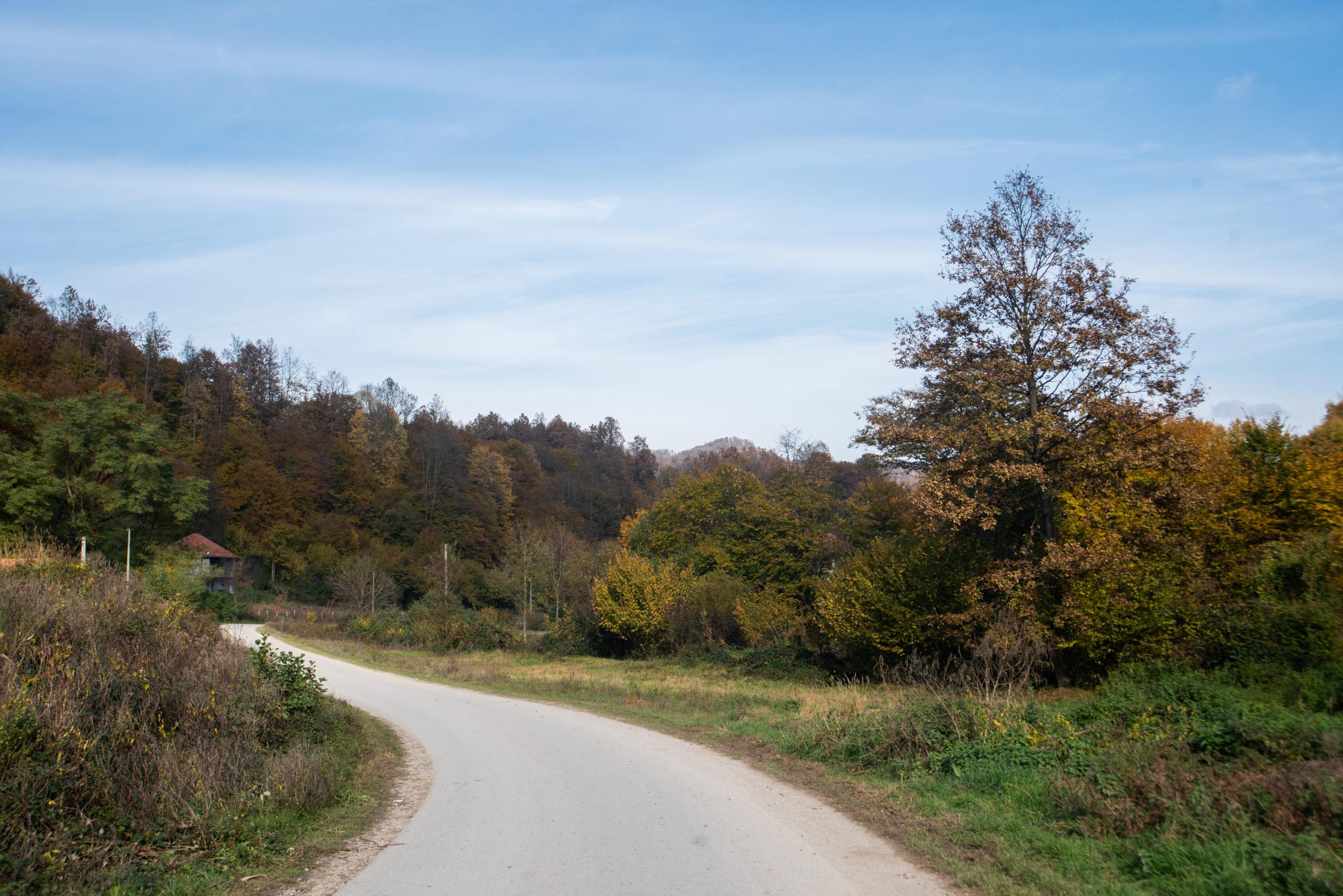 Cancari Road 11