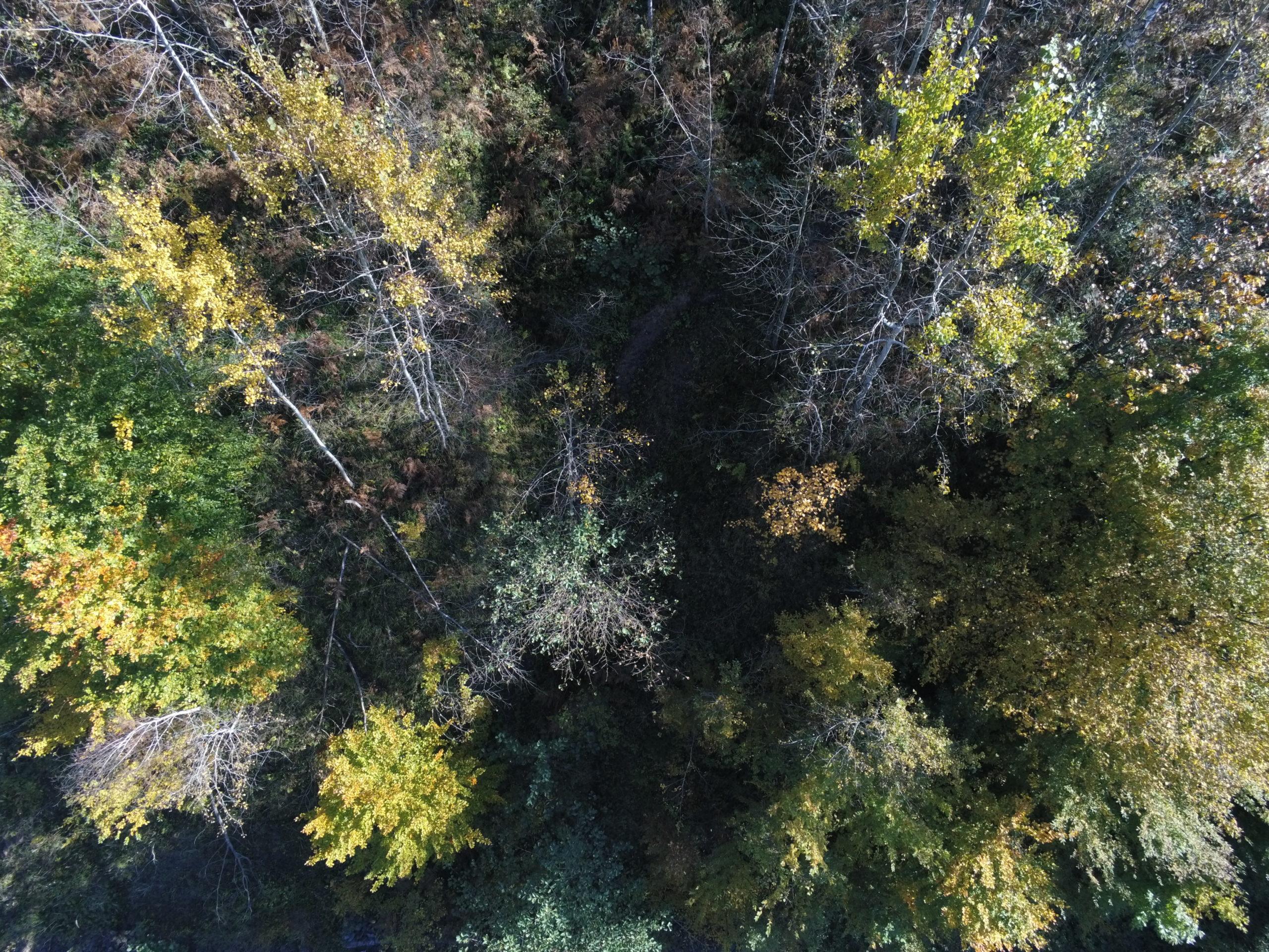 Hodzici Road 7 - Drone