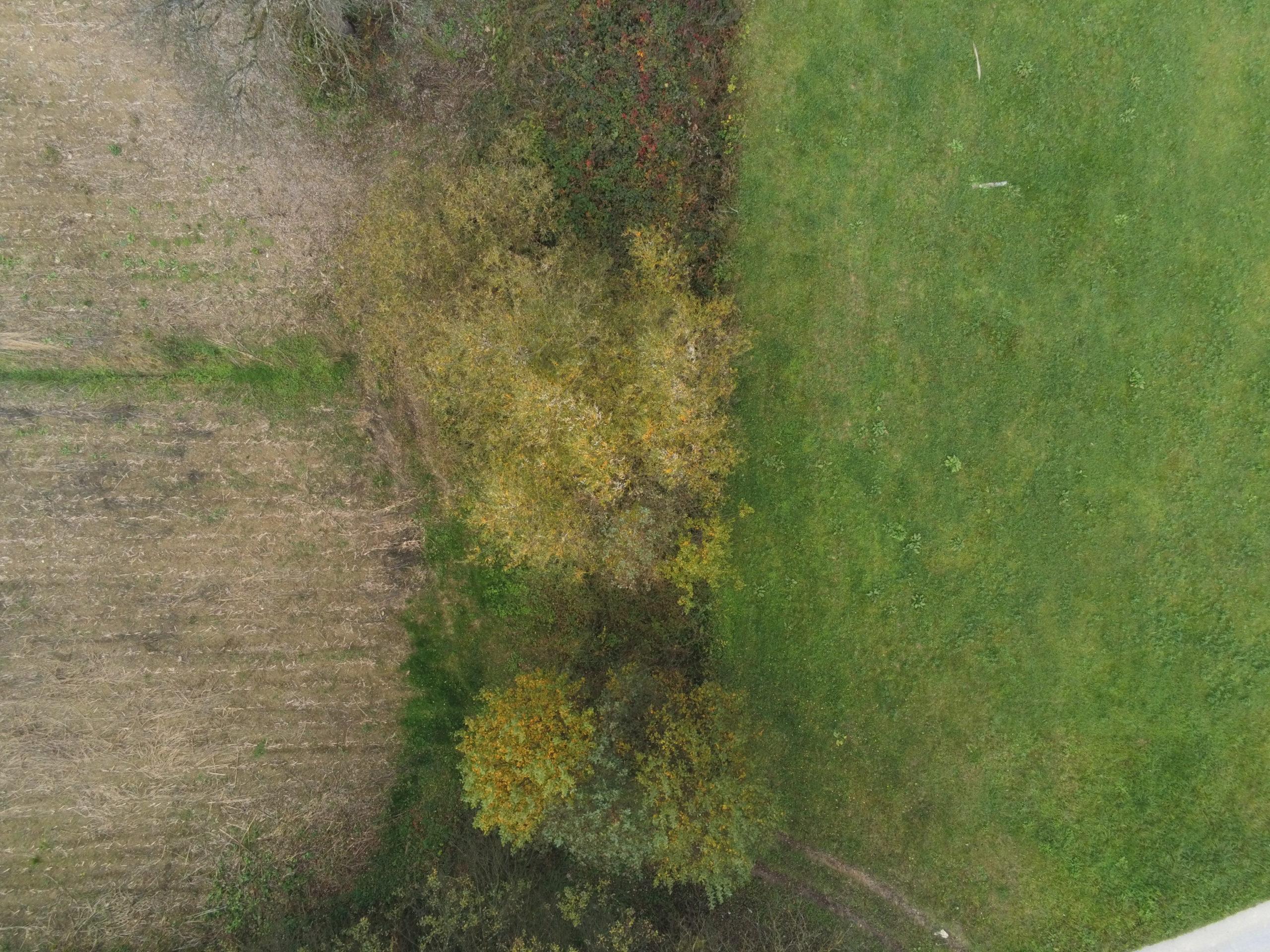 Glogova 2 - Drone