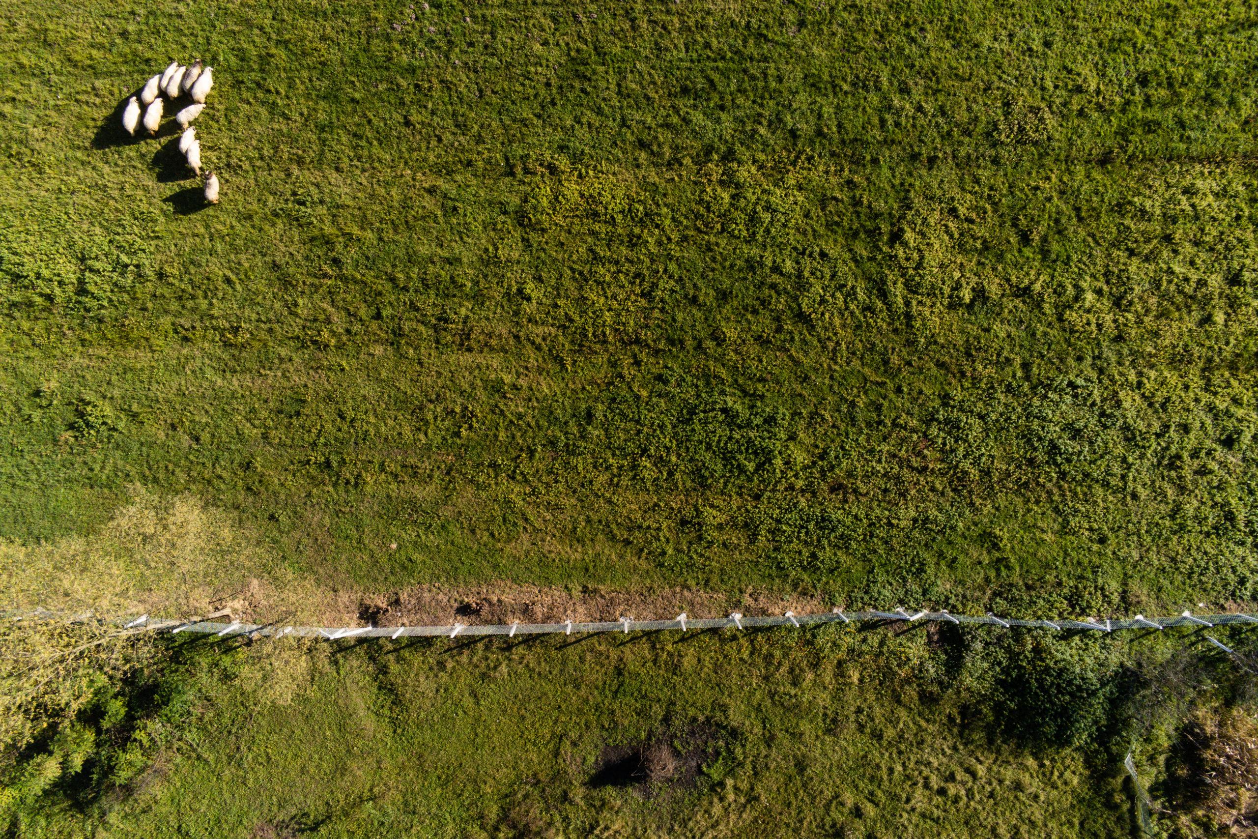 Stari Kevljani - Drone